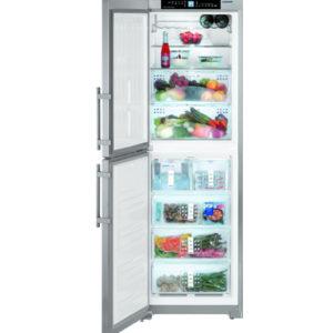 KE 嘉儀 276公升BioFresh+冷凍櫃 SBNes3210