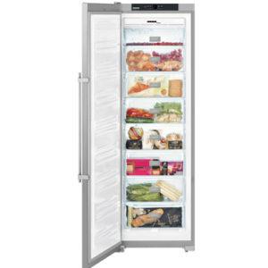 KE 嘉儀 261公升冷凍櫃 SGNesf3063